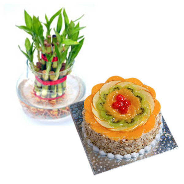 10. lucky bamboo and fresh fruit cake